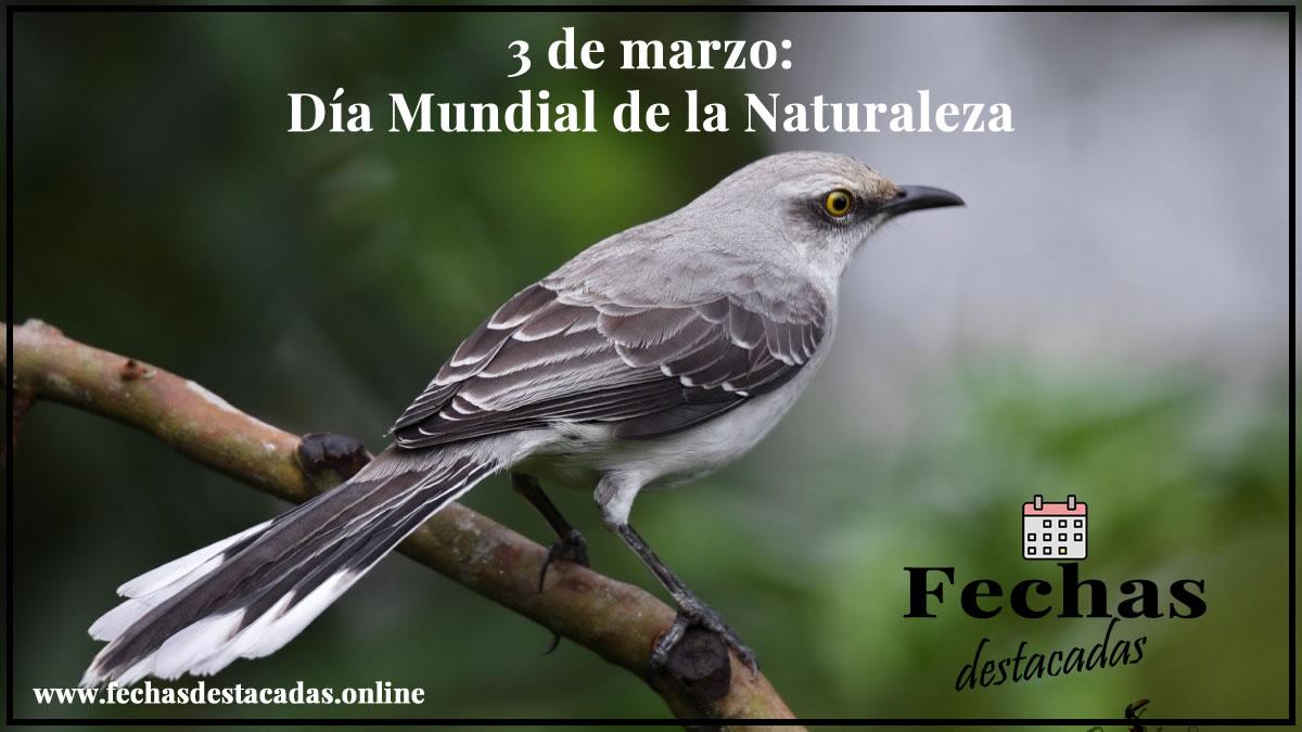 3 de marzo: Día Mundial de la Naturaleza