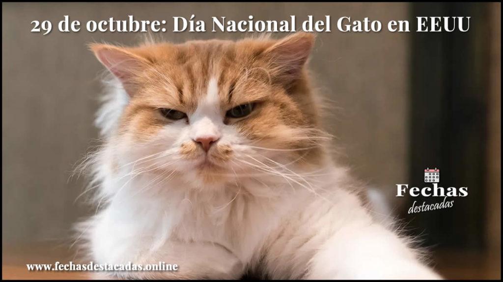 Día Nacional del Gato en Estados Unidos
